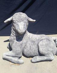 Lamb (Large)
